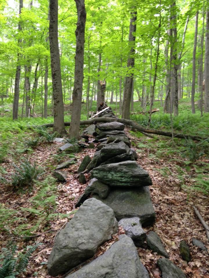 Schlaf Farm stone wall